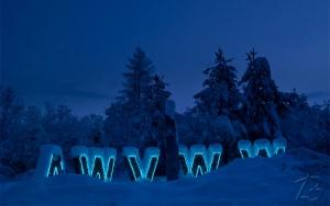 Weiße Weihnachten 2010